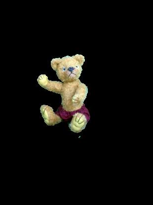 変身bear1