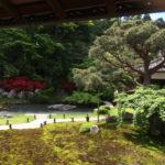 青蓮院の庭