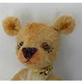 Yellow-bear3